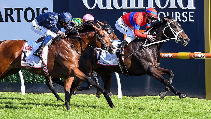 Verry Elleegant strides to the post to win the 2020 Caulfield Cup.