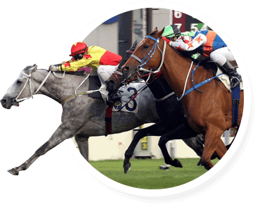 horse race with tight finish